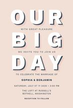 Our Big Day by Megan Timanus