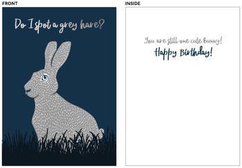 Grey Hare