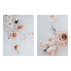 Fleur 1 + 2