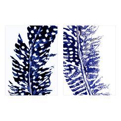 Indigo Feathers