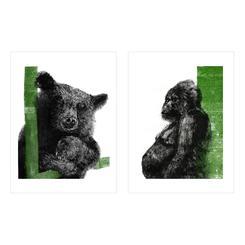 Bear and Chimpanzee